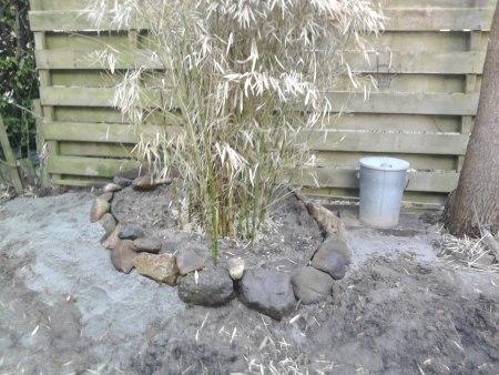 Ingetoomde-bamboe