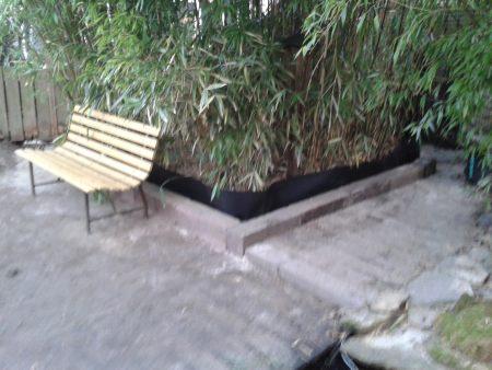 Bamboeborder-ingetoomd
