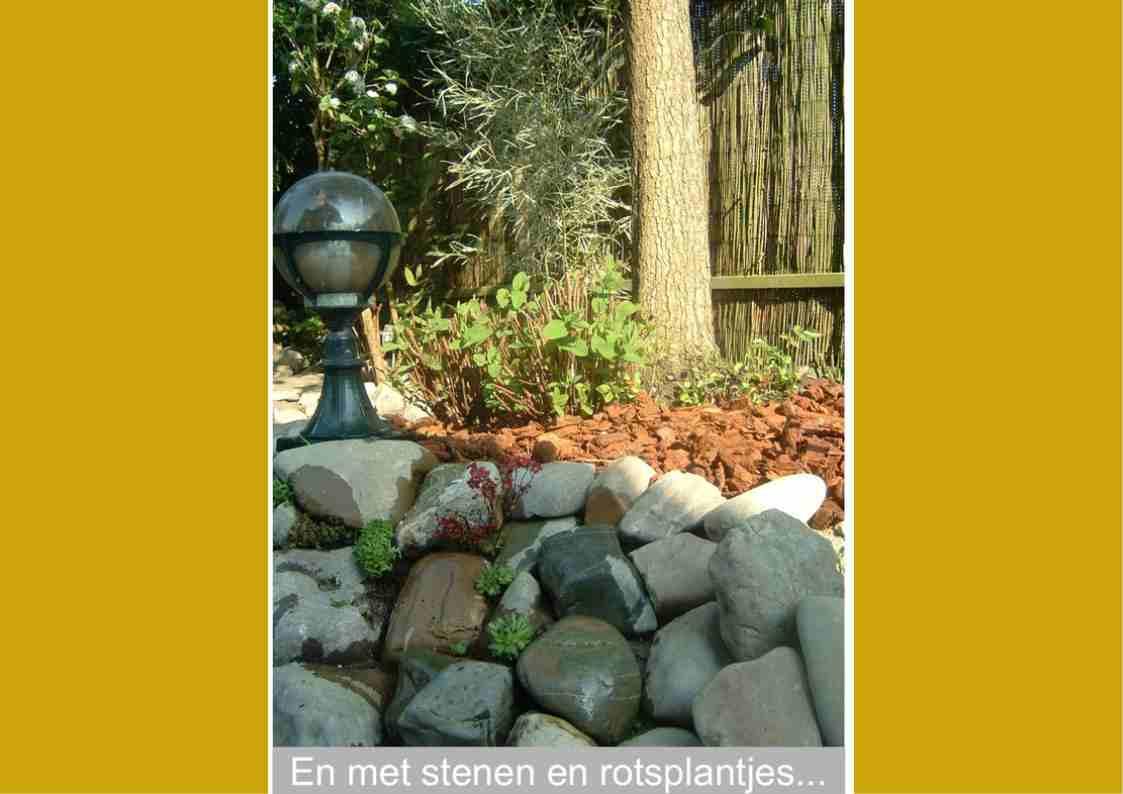 Projecten-Rotsborder04